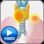 Cervico-Thoracic Surgery - Icon